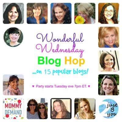 blog hop cover