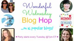 Wonderful Wednesday Blog Party
