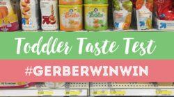 Snacks For Toddlers Taste Test