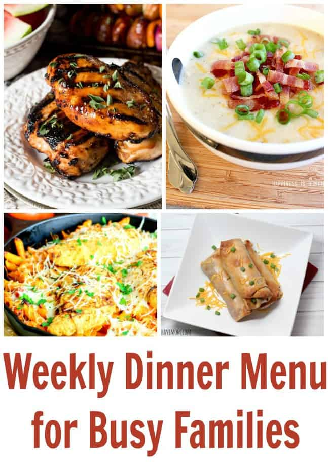 Easy weekly dinner menu for busy families! Featured here in our weekly blog party, this weekly dinner menu was the MOST viewed at our blog party. Here are the delicious dinner recipes along with other party favorites.