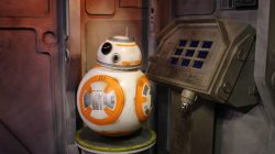 The 5 Best Star Wars Characters At Disney